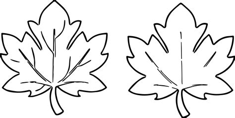 fall leaf coloring pages fall leaves images for fall leaf coloring page