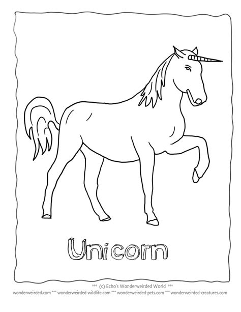 realistic unicorn coloring page realistic unicorn coloring pages coloring home