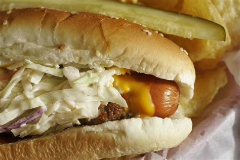 s cosmic dogs the days of summer are here charleston postandcourier