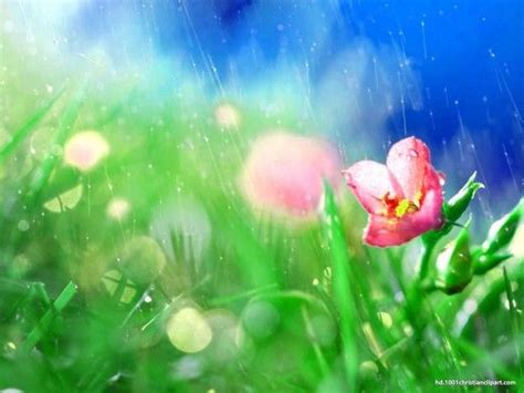 rain powerpoint themes 209 best images about powerpoint backgrounds on pinterest