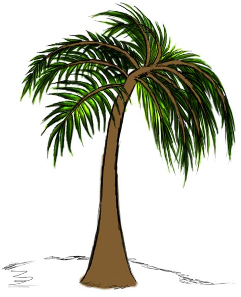 Tree Trunk Images   Free Download Clip Art   Free Clip Art   on Clipart Library