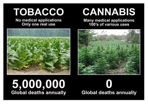 Marihuana Memes - marijuana cigarettes memes