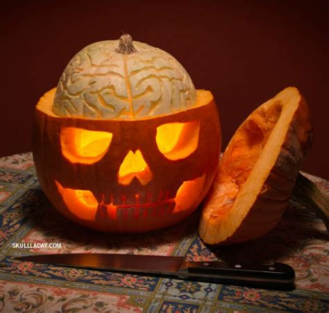 clever pumpkin 16 clever pumpkin carving ideas pumpkins halloween art