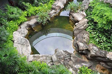 idee giardino roccioso giardino roccioso come progettare al meglio un rock
