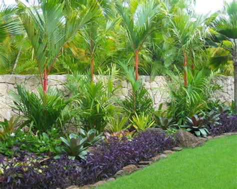 tropical landscape houzz