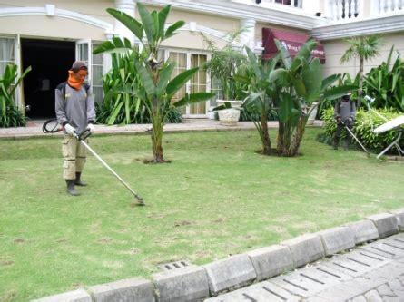 Mesin Potong Rumput Di Padang landscaping biosis wilayah jakarta cleaning service pest dan landscaping