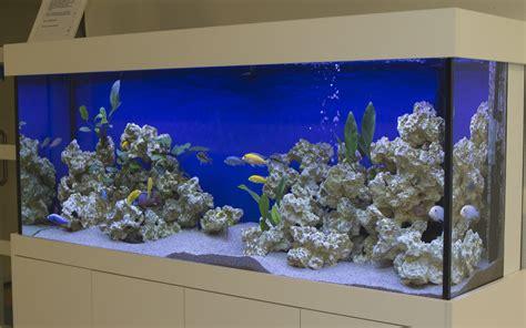 design aquarium kopen home aquariadesign