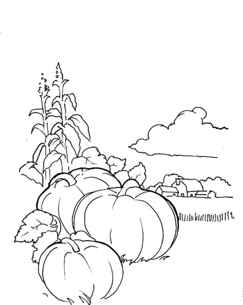 Kids Korner Free Coloring Pages Halloween Pumpkin Patch Pumpkin Patch Coloring Page