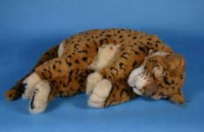 Jaguar Stuff Sleeping Jaguar Or Leopard Kitten Plush