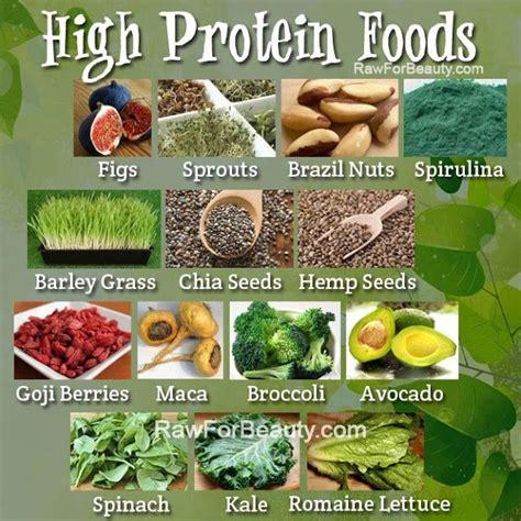 protein vegan foods vegan high protein foods paleo recipes