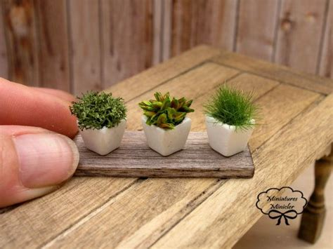 mini herb garden dollhouse kitchen herbs collection
