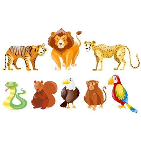 Animals Collection animals collection vector free