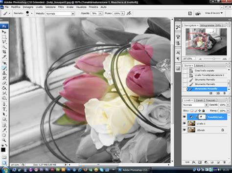 tutorial photoshop cs5 bianco e nero tutorial immagini a colori dentro al bianco e nero con