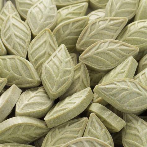 Original Refill Glucose Easy Touch Isi 25 original sugar free green tea mints refill bag