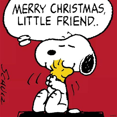 christmas happy  year images  pinterest charlie brown woodstock