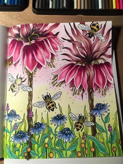 coloring books for adults with pencils 56 best images about dagdrommar karlzon on