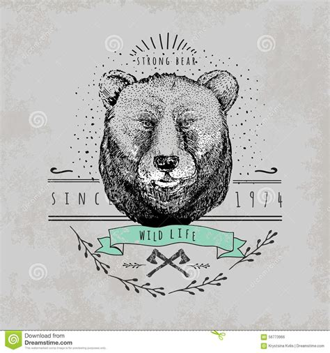 pattern surf graphic t shirt vintage bear logo stock vector image 56773966
