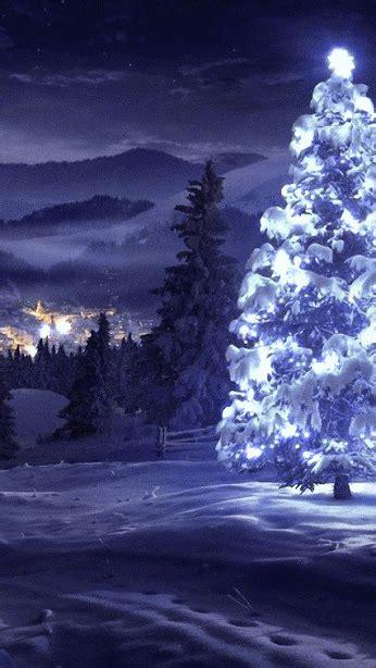 christmas tree fondos de navidad hd navidad de color azul fondos navidad