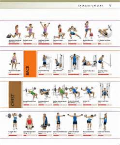 Weight Bench Workout Chart Strength Training