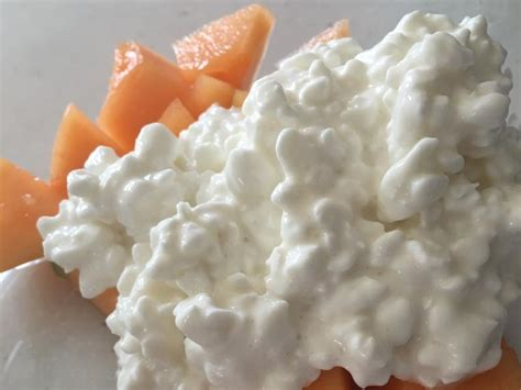 cottage cheese and cottage cheese cantaloupe recipe and nutrition eat
