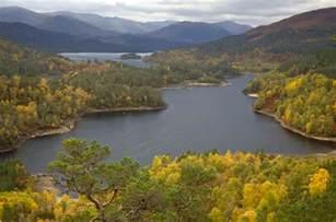 Glen Affric conservation weeks glen affric trees for life