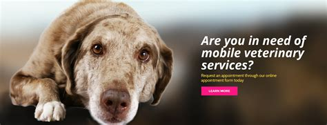 Creature Comforts Veterinary Service by Home L Creature Comfort Veterinary House Call Services