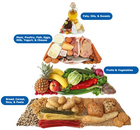 65 g carbohydrates home 791279999116693553 weebly