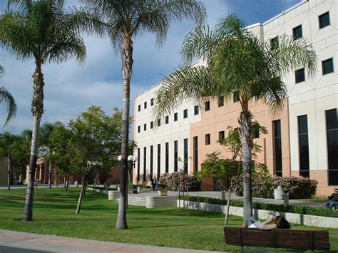 Cal State La Mba by California State Northridge College Of