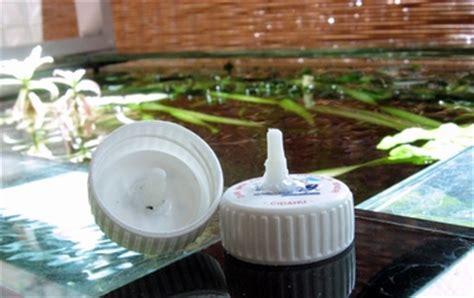 membuat aquascape indonesia cara membuat diy co2 ragi aquascape indonesia