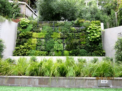 Greenroofs Com Projects San Francisco Residential Living Walled Garden Comcast