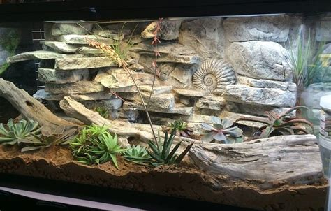 reptile l stand diy diy tutorials vivarium diy tutorial