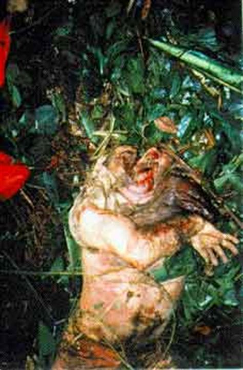 imagenes mamonas de año nuevo cifras para viol 227 o corpos dos mamonas assasinas mortos