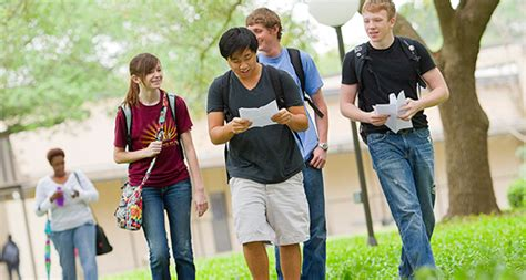 college admission requirements lamar university