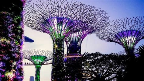 attractions  singapore  places