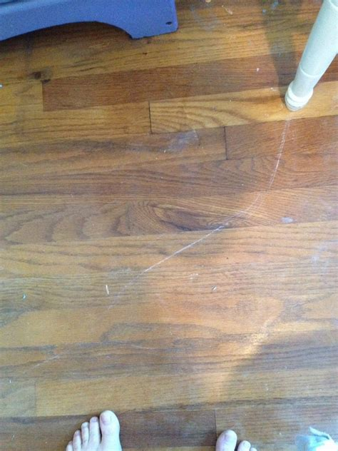 how to fix your dull scratched wood floors trusper