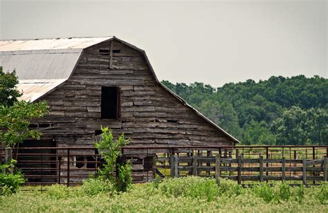 Shed Barns For Sale Old Wood Barn Photograph By Lisa Moore