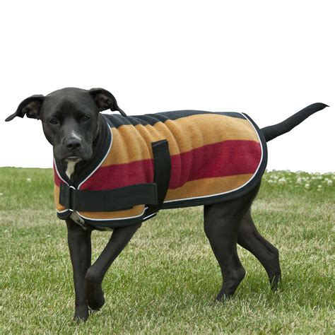 pattern for dog winter coat dog coats www pixshark com images galleries with a bite