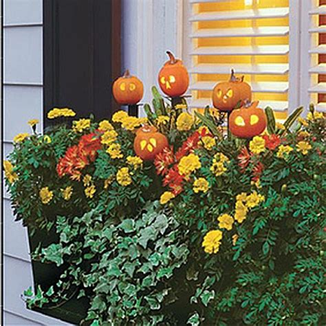 Window Box Decorating Ideas by Window Boxes Fall Wreaths And Decorations