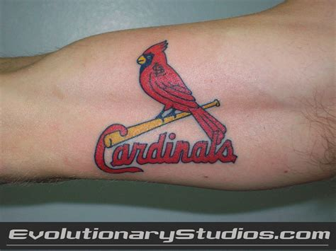 stl tattoos designs st louis cardinals modification