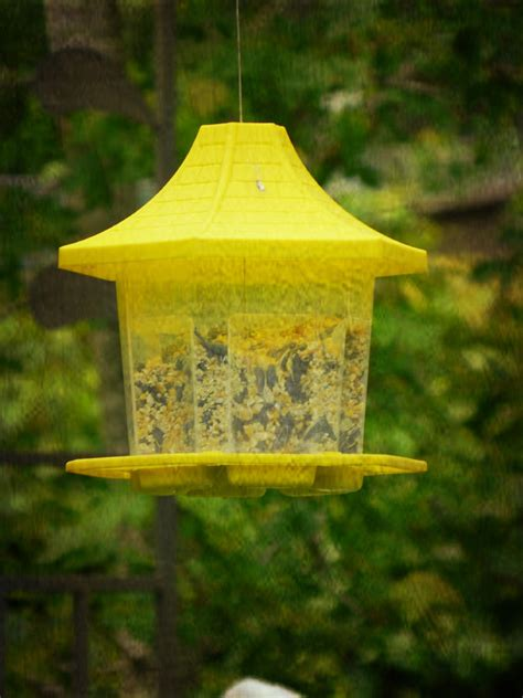 grandma s yellow bird feeder photograph by ester rogers