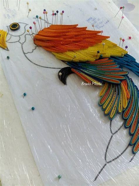 procedure quilling parrot branka mileti all about b2c6df056773d0e73c04163754e53bf3 jpg 720 215 960 p 237 xeles