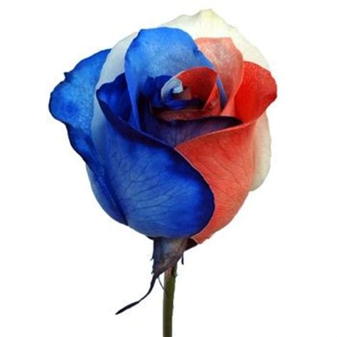 red white and blue rose tattoo white blue memorial day july 4th labor day