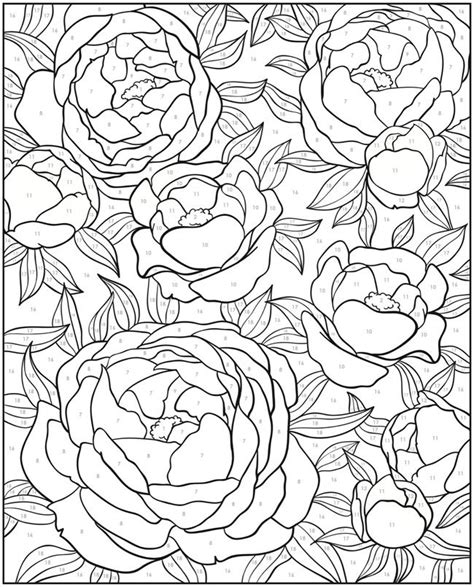 color by number coloring books for adults 1338 best coloring pages images on