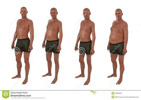 average male body male body shape diversity stock photo image of shape