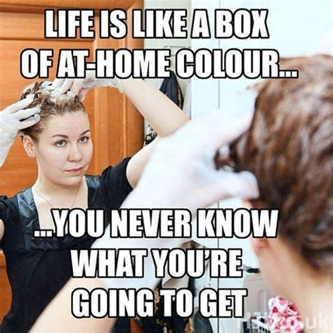 Cosmetology Memes - seven diy hair fails that will make you cringe then laugh