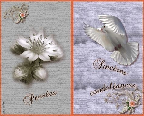 carte de condol 233 ances 224 imprimer ou envoyer cartes gratuites