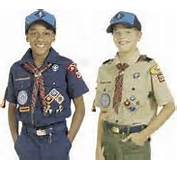 Point Out And Explain The Three Parts Of Webelos Scout Uniform