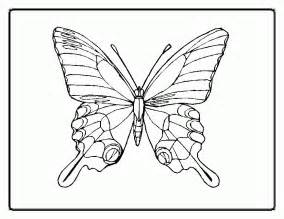 butterfly coloring pages pdf butterfly coloring pages coloring home