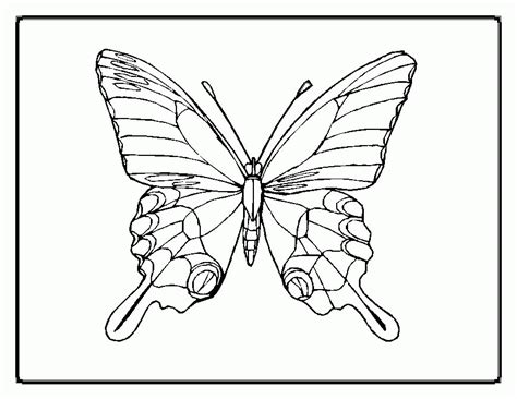 butterfly coloring pages coloring home
