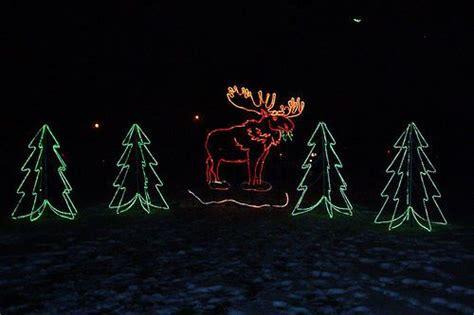 lights before christmas toledo zoo toledo zoo lights